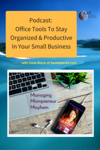 De-Clutter and GET ORGANIZED To Be More Productive Podcast