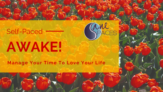 AWAKE! 6 Week Time Management Training