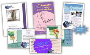 Get Organized For Good! Self-paced bundle!