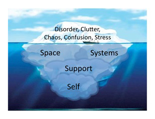 Sane Spaces Dimensions help with overwhelm/sanespaces.com