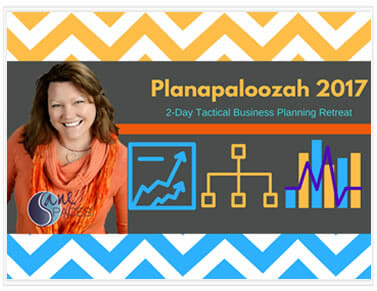 Planapaloozah 2017/planning/sanespaces.com