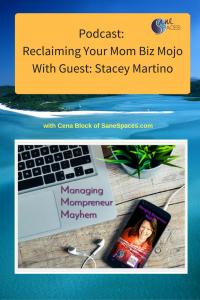 Reclaiming mom biz mojo/sanespaces.com/mompreneur