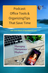 Office Tools & Organizing Tips/podcast/sanespaces.com/planning