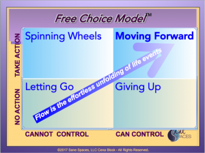 Free Choice Model for Decision Making, SaneSpaces.com, Cena Block