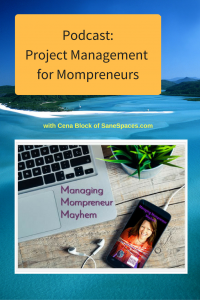 Project Management for Mompreneurs | Podcast |SaneSpaces.com
