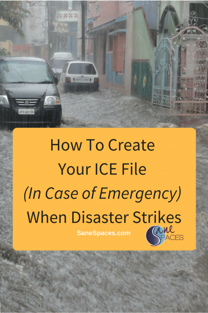 How To Create ICE Files Vital Documents/ICE File/sanespaces.com