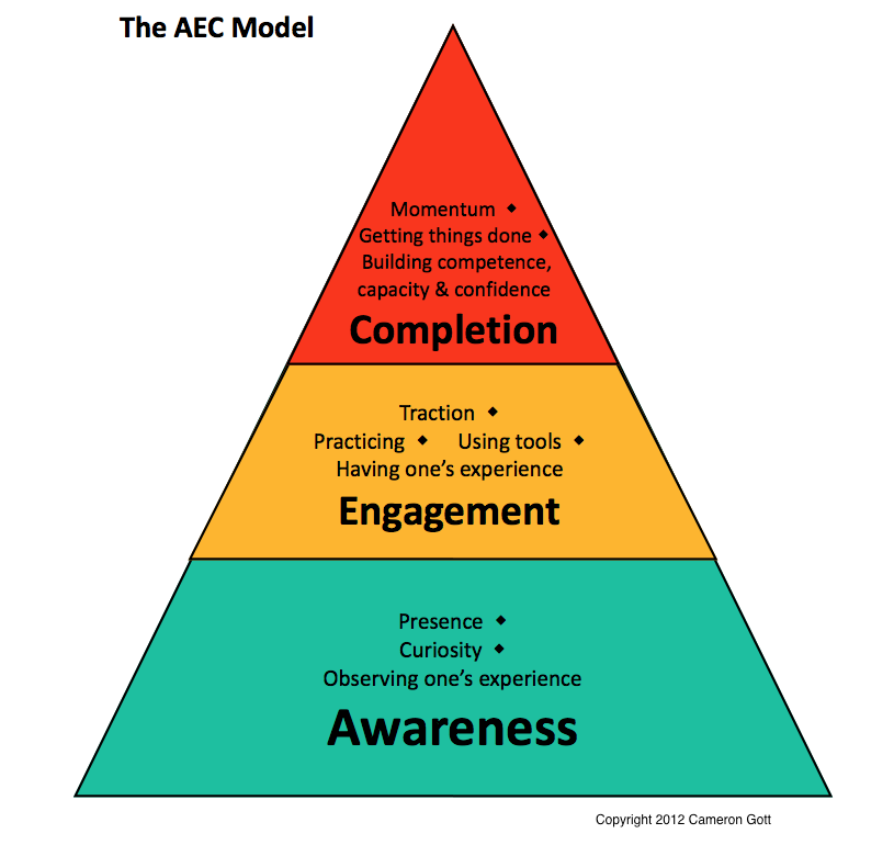 ADHD Coaching AEC Model ©2012 Cameron Gott